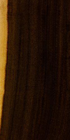 Waddywood (oiled)
