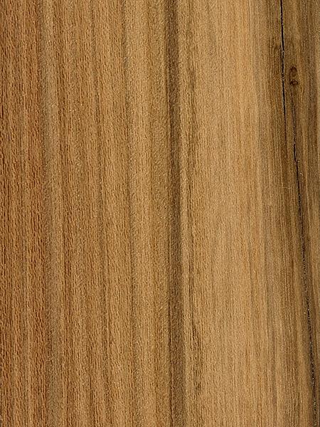 Afata The Wood Database Lumber Identification Hardwood