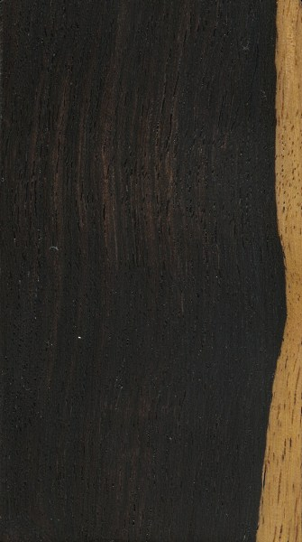 black wood tileable dark wood texture black   hedgy space