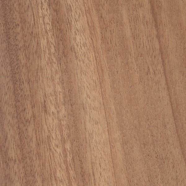 African mahogany the wood database lumber