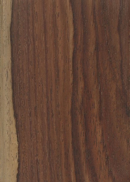 Amazon rosewood the wood database lumber for The rosewood