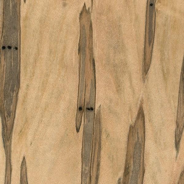 Ambrosia Maple The Wood Database Lumber Identification