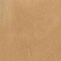 American Beech (sealed)