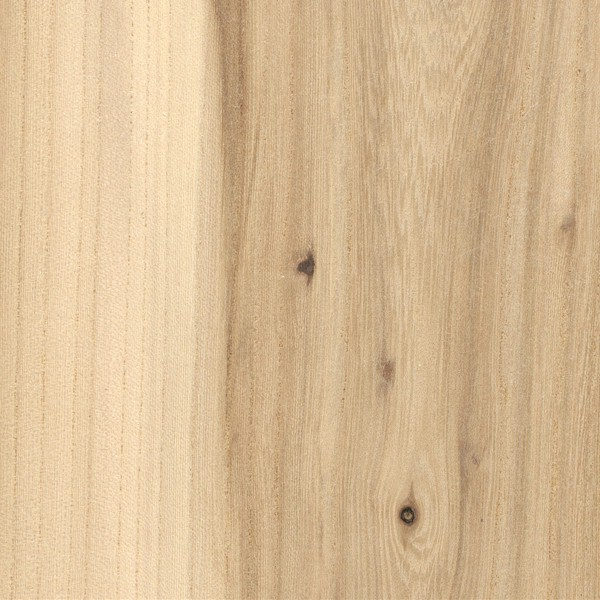 American Elm The Wood Database Lumber Identification