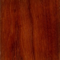 Andaman Padauk (sealed)