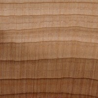 Aromatic Red Cedar (endgrain 10x)
