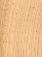 Atlantic White Cedar (sealed)