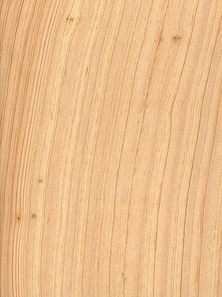 White Cedar Lumber ~ Atlantic white cedar the wood database lumber