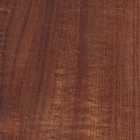 Australian Blackwood (sealed)