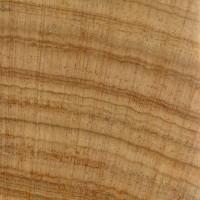Australian Cypress (endgrain 10x)