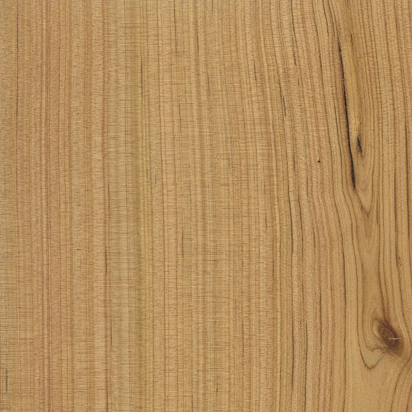 Australian cypress the wood database lumber identification softwood - Australian cypress hardwood ...