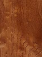 Australian Red Cedar (sealed)