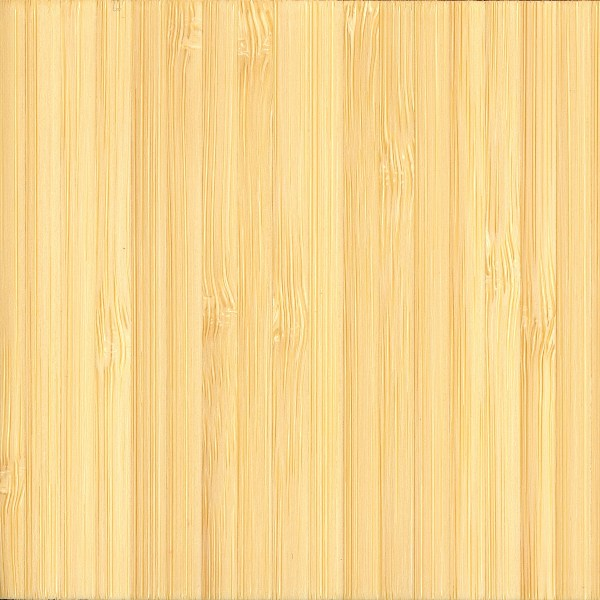 Bamboo The Wood Database Lumber Identification Monocot