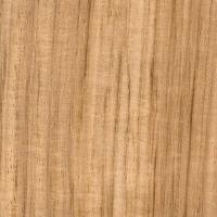 Ebiara (lighter color)