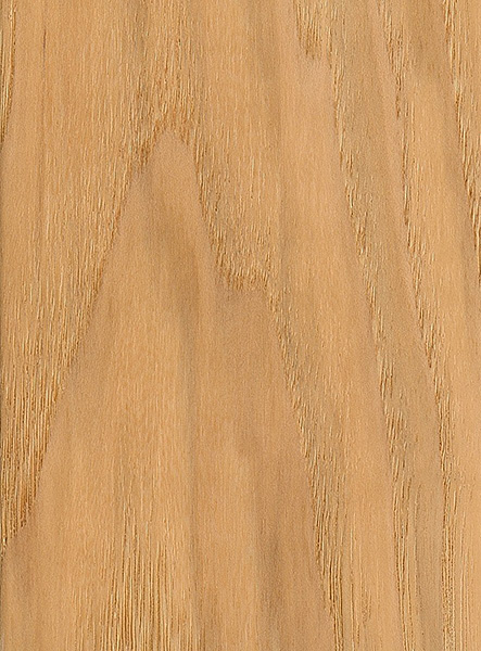 Bitternut hickory the wood database lumber
