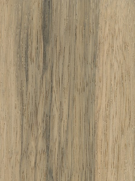 Limba The Wood Database Lumber Identification Hardwood