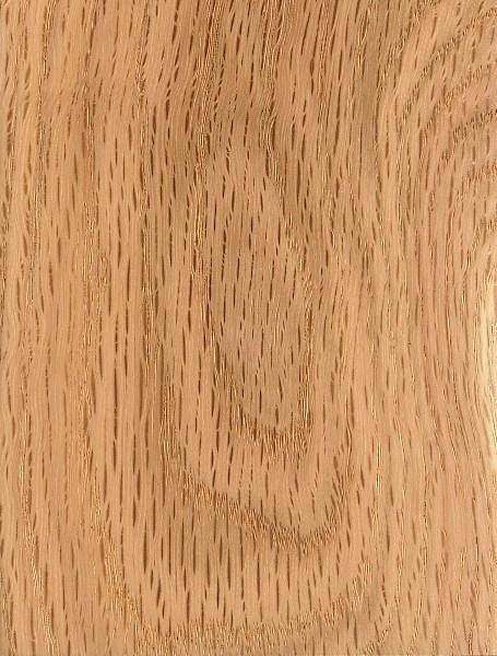 Oak Wood Lumber ~ Black oak the wood database lumber identification