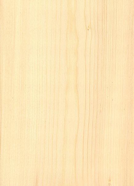 Black Spruce The Wood Database Lumber Identification