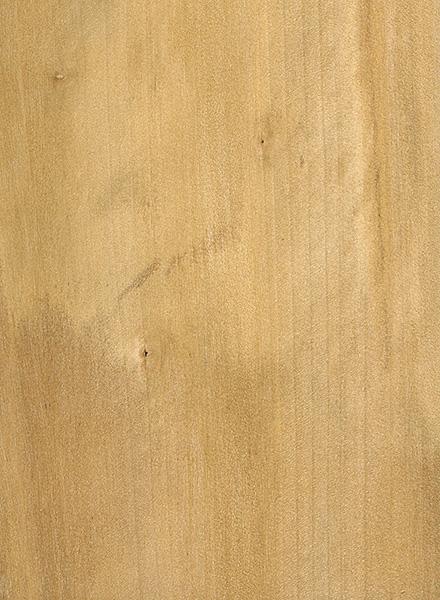 Black Tupelo The Wood Database Lumber Identification