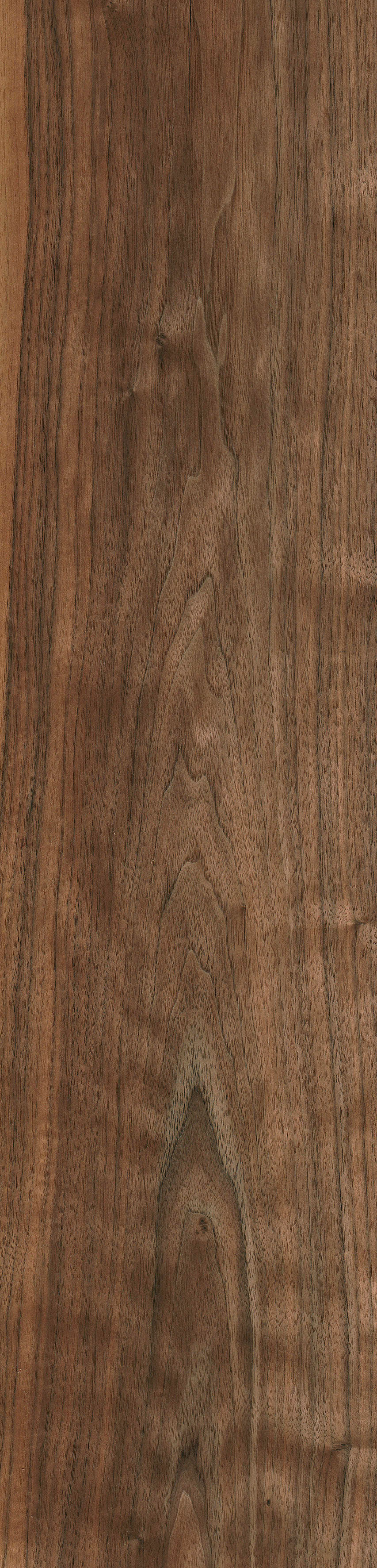 Black Walnut The Wood Database Lumber Identification