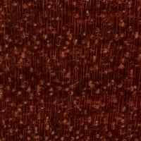 Bloodwood (endgrain 10x)
