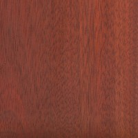 Bloodwood (sealed)