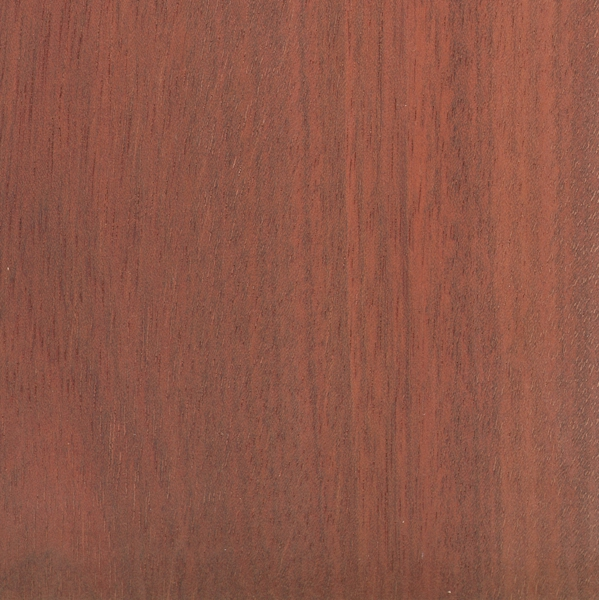 Bloodwood The Wood Database Lumber Identification