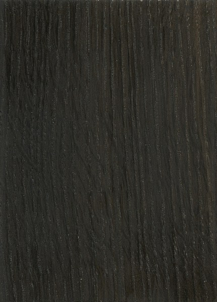 Bog oak the wood database lumber identification hardwood