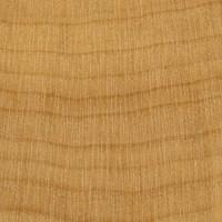Boxwood (endgrain 10x)