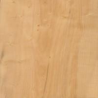 Boxwood (sealed)
