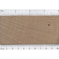 Lacewood (endgrain)