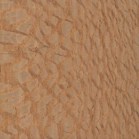 Brazilian Lacewood (sealed)