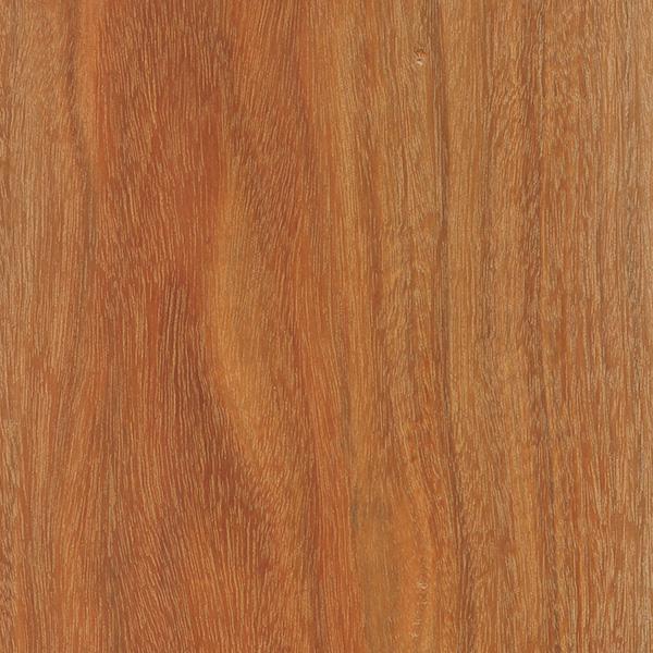 Brazilwood The Wood Database Lumber Identification