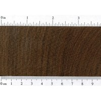 Brown Ebony (endgrain)