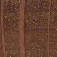 Australian Buloke (endgrain 10x)