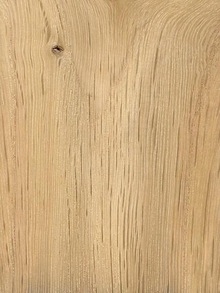 Bur Oak The Wood Database Lumber Identification Hardwood