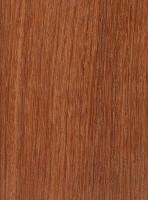 Burma Padauk (Pterocarpus macrocarpus)