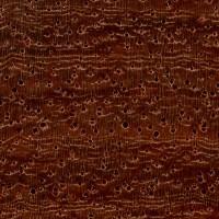 Burma Padauk (endgrain 10x)