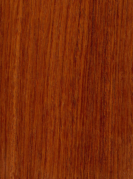 Burma Padauk The Wood Database Lumber Identification