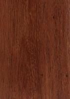 Burmese Rosewood (Dalbergia oliveri)