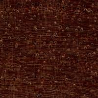 Burmese Rosewood (endgrain 10x)