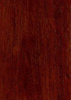 Burmese Rosewood (sealed)