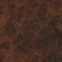 Carpathian Elm burl (sealed)