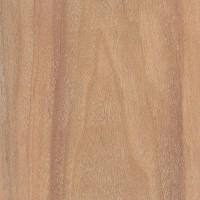 Cebil (Anadenanthera colubrina)