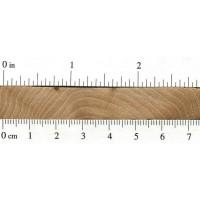 Cedar Elm (endgrain)
