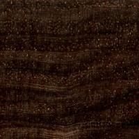 Cocuswood (endgrain 10x)