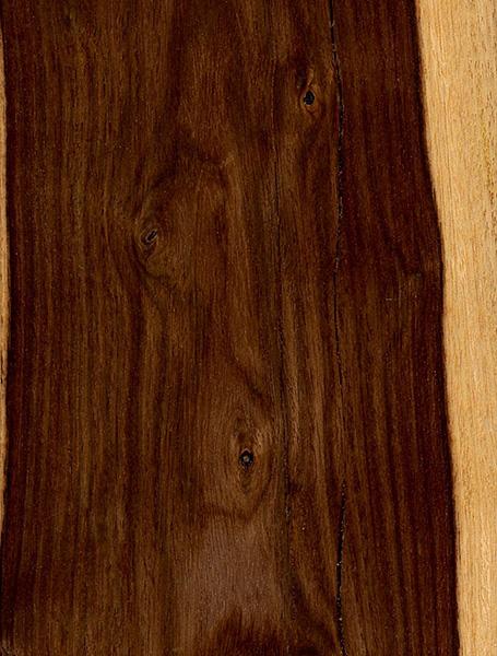 Cocuswood The Wood Database Lumber Identification