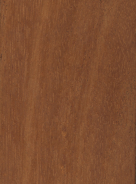 Mahogany wood prices pdf woodworking