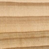 Cypress (endgrain 10x)