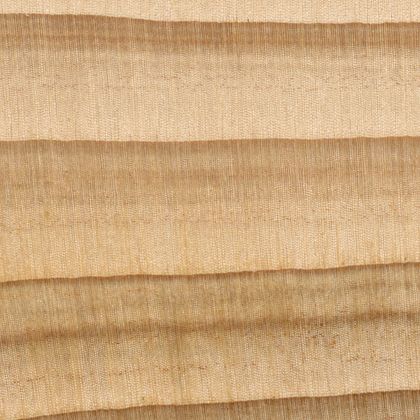 Cypress The Wood Database Lumber Identification Softwood